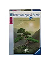 Ravensburger Puzzles Zen Attitude, Multi Color (1000 Pieces)