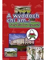 A Wyddoch Chi am Sefydliadau Cymru? (Cyfres a Wyddoch Chi)