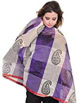 Exotic India Double-Shaded Chanderi Dupatta with Printed Paisleys - Color PurpleColor Free Size