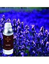 The Perfumers Aroma Lavender Essential Oil - 1000ml