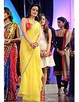 Amisha Patel Yellow Saree - Bollywood Sarees by Style Fashion Hub