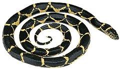 切り落とした蛇の首に噛み付かれ料理人死亡