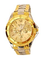 Fighter Gold Rosra Classic Men's Analog Watch - Rosra SGD