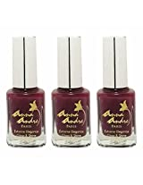 Anna Andre Paris Set of 3 Nail Polishes, Shade 80017, Pompeii Purple