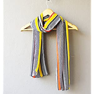 Madhurima Bhattacharjee Multi Colored Chevron Scarf