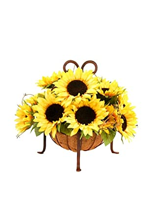Creative Displays Sunflowers in Iron Basket