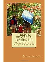 Trepte Pe Calea Credintei: Calatorie in Lumea Credintei: Volume 3 (Universul Timpului Intermediar)