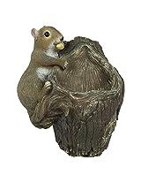 Squirrel Tree Hanger with Bird Feeder(Gift Item, Bird Feeder, Garden Decor)