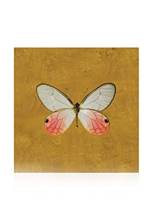 Studio A Butterfly #4 Gold, 10