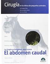Al abdomen caudal/ The Abundant Abdomen: Cirugia En La Clinica De Pequenos Animales/ Surgery in the Clinic of Small Animals