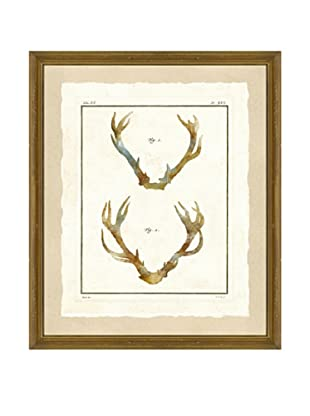 Watercolor Antler Giclée Print I