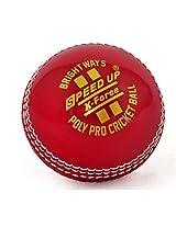 Cricket Poly Soft Ball