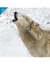 Wolves 2014 Wall Calendar