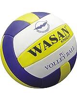 Wasan Knight Pu Volleyball