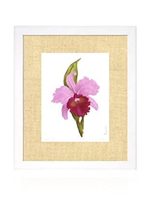 Orchid I, White/Bamboo