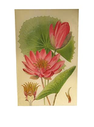 Twigs and Moss Bright Pink Water Lily Glass Tray