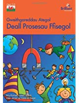 Deall Prosesau Ffisegol: Understanding Physical Processes (Brilliant Support Activ/Scienc)