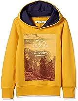 Allen Solly Junior Boys' Sweatshirt