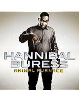 Animal Furnace [Vinyl]