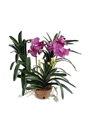 New Growth Designs Faux Vanda Orchid Plant, Plum