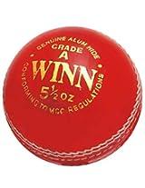 """Cricket Ball """"CW Winn"""" (Pack of 3)"""