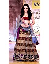 Celina Jaitly Indian Traditional Bollywood Designer Partywear saree, Designer Saree