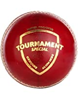 Sg Cricket Ball Tournament Special