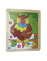 DCS Owls Puzzle