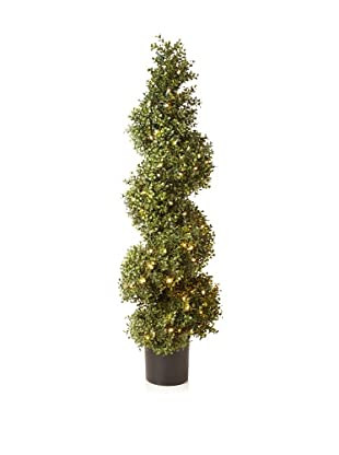 Winward Illuminated Boxwood Spiral Topiary