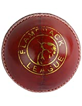 KKS League Youth's Leather Cricket Ball Standard (Red & White)