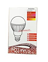 Premium Quality 12 Watt LED Bulbs (Set Of 2)