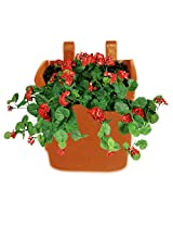 Pepper Agro Vertical Garden Wall Hanging (Terracotta, 10 Qty)