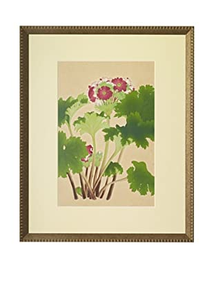 1929 Botanical Japanese Woodblock Primrose
