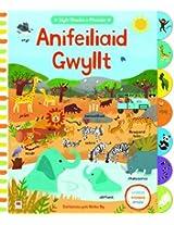 Anifeiliaid Gwyllt (Cyfres Chwilio a Ffeindio)