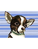 Oopsy daisy Ace The Chihuahua Stretched Canvas Wall Art by Meghann O'Hara, 14 by 10-Inch