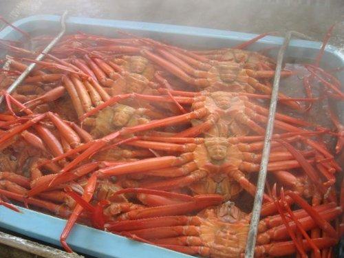 茹でたて訳あり紅ズワイ蟹2kg