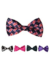 DBFF0018 Series Colors Satin Classic Stain Boys Pre-Tied Bow Ties Set - 5 Colors Available By Dan Smith