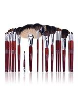 SHANY Cosmetics NY Collection Pro Brush Kit, 13 Ounce