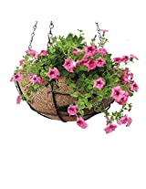 Pepper Agro Medium Coco Fiber with Potting Hanging Planter