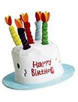 Forum Novelties Happy Birthday Cake Top Hat