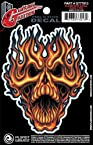 Planet Waves Guitar Tattoo Decal - Flame Whip Skull