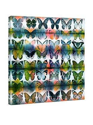 Parvez Taj Leinwandbild Butterflies Squared
