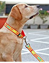Hero Heera Lal Martingale collar & Leash Set-M