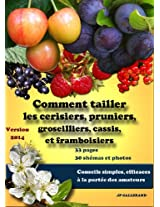 Comment tailler les cerisiers, pruniers, framboisiers, groseilliers, cassis