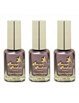 Anna Andre Paris Set of 3 Nail Polishes, Shade 80049, Lilac Lust