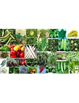Organic Vegetable Small Seeds Pack