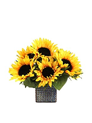 Creative Displays Sunflowers in Square Pot