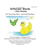 Different Words -Same Meaning Tagalog Version