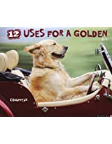 12 Uses for a Golden 2013 Calendar