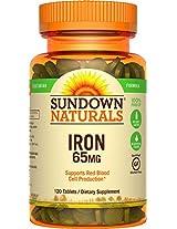 Sundown Naturals Iron Ferrous Sulfate 65 Mg, 120 Count
